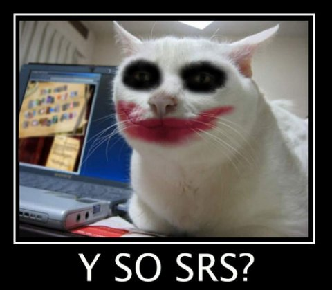 Joker cat asks