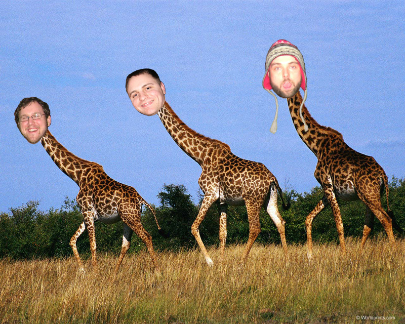 Safari the Giraffe (reallylongnecks.com)