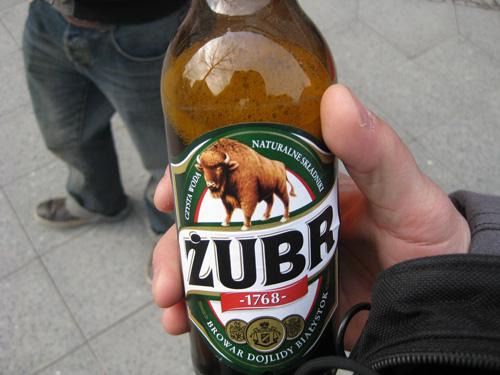 zubr bier